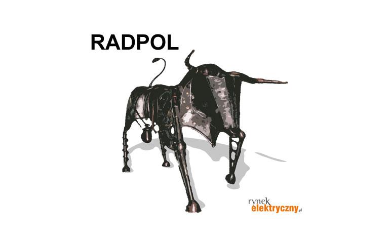 Istotny spadek sprzedaży w Radpolu
