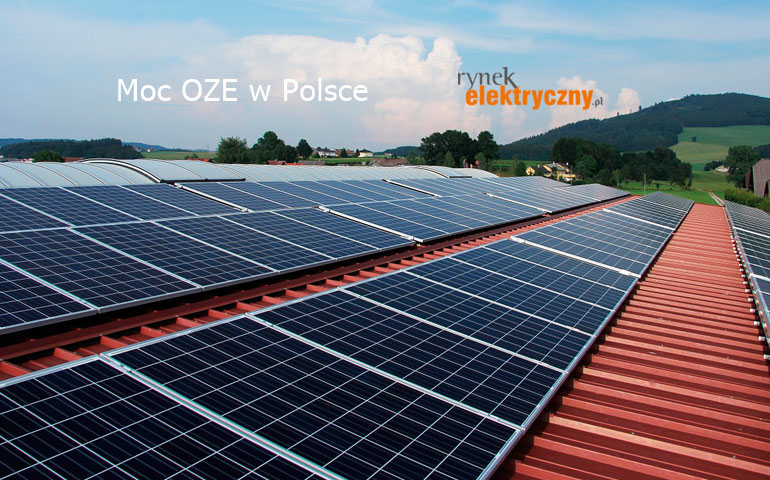 Połowa wzrostu mocy OZE w Polsce pochodzi z fotowoltaiki