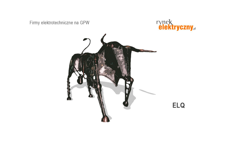 Spółka ELQ poszerzyła działalność o budowę farm fotowoltaicznych