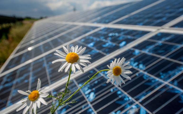 Ruszyły aukcje dla wytwórców energii elektrycznej z OZE