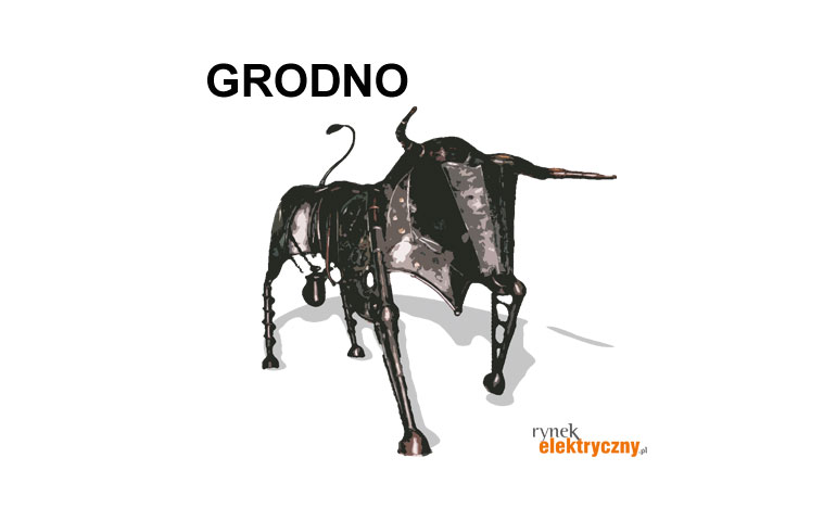 Przejęcia i fotowoltaika napędziły Grodno