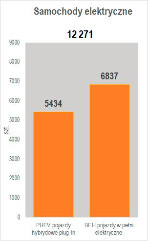 liczba samochodów elektrycznych czerwiec 2020