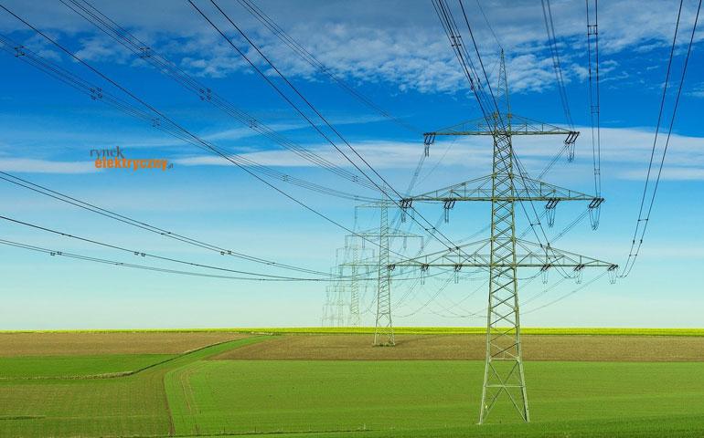 Najwięksi gracze rynku wytwarzania energii elektrycznej