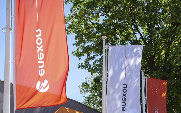 flagi z logo Enexon